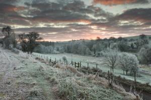 Sunrise beside Top Road Ebbesbourne