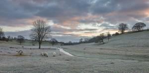 Fifield water meadows in winter