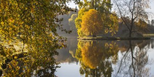 Autumn leaves and reflections at Stourhead.