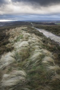 Winter's day on the North Yorkshire Moors