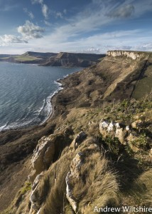 The Jurassic Coast from St Aldhelm's Head